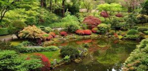 botanik bahçe
